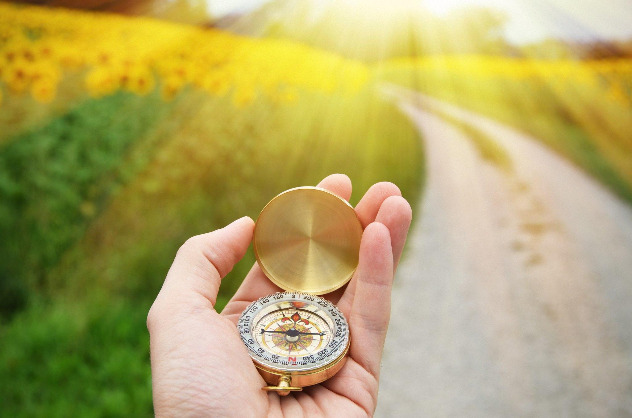 Надежда наш компас земной