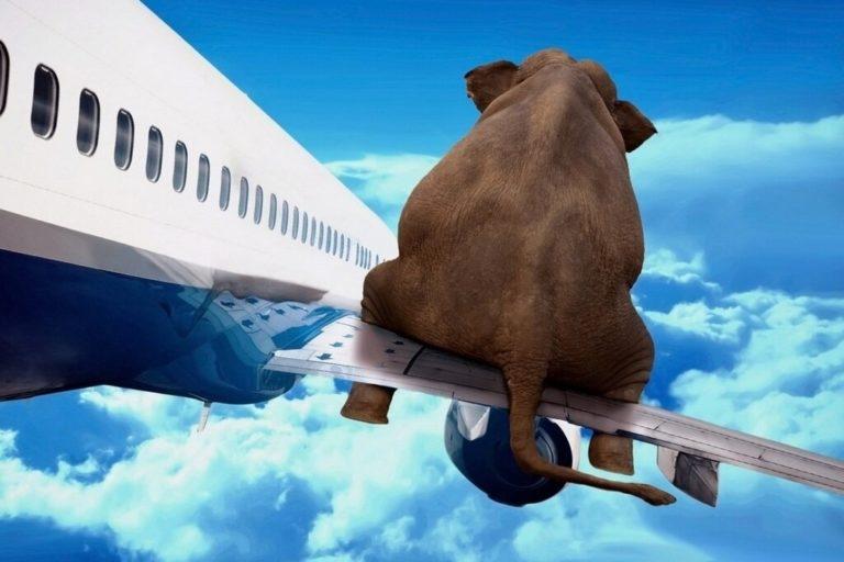 Boeing удержал рынки от падения